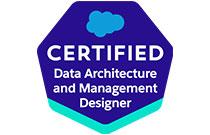 salesforce data architecture designer